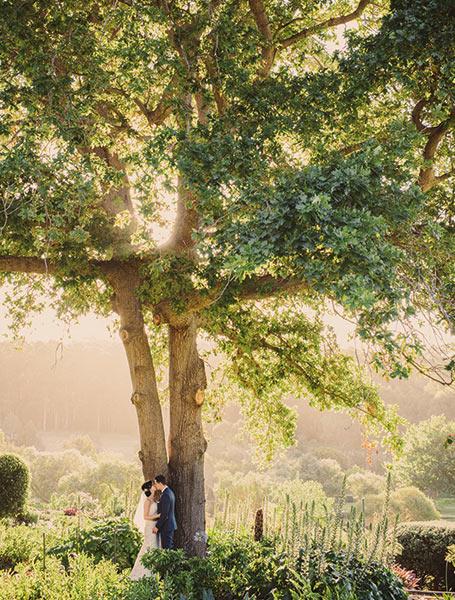 Wedding gardens of the Margaret River region